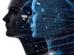 Digital Twin expertise